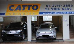 catto-1